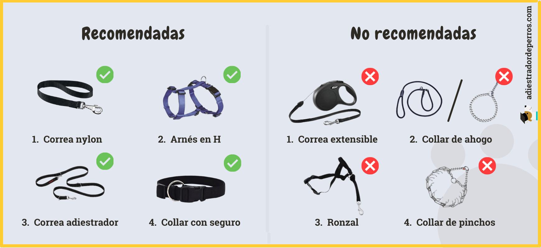 herramientas recomendadas para el paseo del cachorro